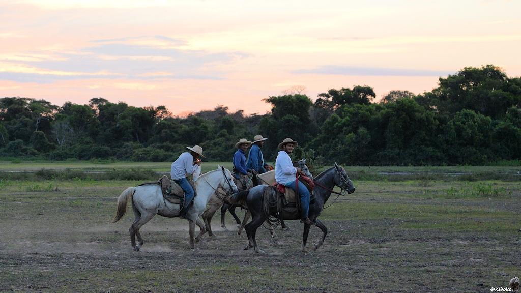 Vier Reiter auf dem Heimweg